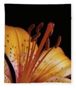Orange Day Lilly On Black Fleece Blanket