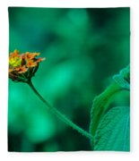 Orange Flower IIi Fleece Blanket