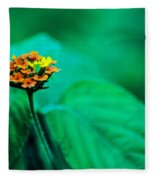 Orange Flower Iv Fleece Blanket
