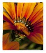 Orange Flower Print Fleece Blanket
