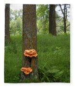 Orange Fungi On A Tree Fleece Blanket