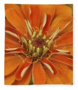Orange Orange Orange Fleece Blanket
