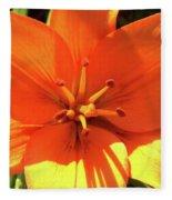 Orange Pop Fleece Blanket