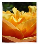 Orange Rose Art Prints Baslee Troutman Fleece Blanket