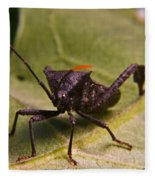 Orange Tipped Antennae Fleece Blanket