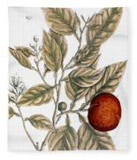 Orange Tree, 1735 Fleece Blanket