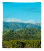 Orange Tree Grove, Santa Paula, Ventura Fleece Blanket