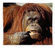 Orangutan  Fleece Blanket