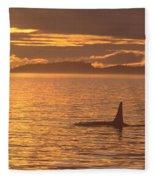 Orca Killer Whale Fleece Blanket