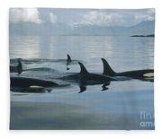 Orca Pod Johnstone Strait Canada Fleece Blanket