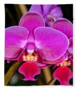 Orchid 422 Fleece Blanket