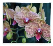 Orchid Beauty Fleece Blanket