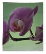 Orchid Fleece Blanket