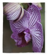 Orchid Strips Fleece Blanket