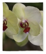Orchid White Trio Fleece Blanket