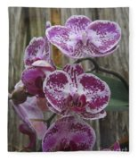 Orchid With Purple Patches Fleece Blanket