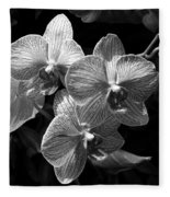 Orchids In Black And White Fleece Blanket