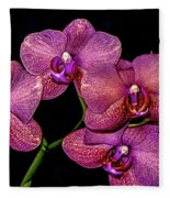 Orchids In Bloom Fleece Blanket