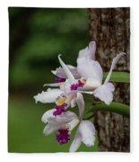 Orchids On A Tree Fleece Blanket