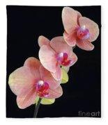 Orchids Reach For The Rainbow Fleece Blanket