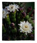 Organ Pipe Cactus Flowers  Fleece Blanket