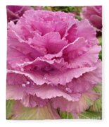 Ornamental Cabbage Fleece Blanket