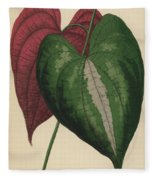 Ornamental Yam  Dioscorea Discolor Fleece Blanket