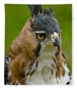 Ornate Hawk Eagle Fleece Blanket
