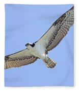 Osprey 1-30-11 Fleece Blanket