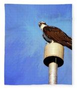Osprey 1 Fleece Blanket