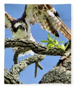 Osprey 4 Fleece Blanket