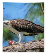 Osprey Breakfast Break Fleece Blanket
