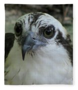 Osprey Portrait Fleece Blanket