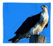 Osprey On A Pole Fleece Blanket