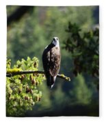 Osprey On Branch Fleece Blanket