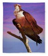 Osprey Solo Fleece Blanket