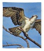 Osprey Wing Stretch Fleece Blanket