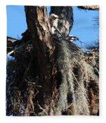 Ospreys In Spanish Moss Nest Fleece Blanket