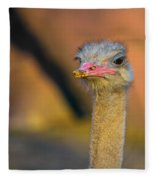 Ostrich Fleece Blanket