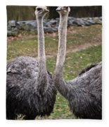 Ostrich Twins 2 Fleece Blanket