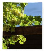Overhead Grape Harvest - Summertime Dreaming Of Fine Wines Fleece Blanket