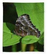 Owl Butterfly With Fantastic Distinctive Eyespots  Fleece Blanket