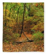 Owl Canyon In Autumn 2 Fleece Blanket