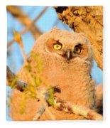 Owlet In A Spring Sunrise Fleece Blanket