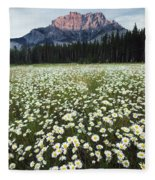 Ox-eyed Daisies And Cascade Mountain Fleece Blanket