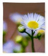 Oxeye Daisy - Paint Fleece Blanket