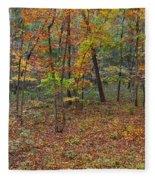 Ozark Forest In Fall 1 Fleece Blanket