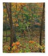 Ozark Forest In Fall 2 Fleece Blanket