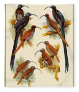 pa FB WilliamTCooper LesserBirdsOfParadise Penny Olsen Fleece Blanket