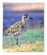 Pacific Golden Plover - 2 Fleece Blanket